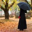 Débat sur la loi concernant les assurances funéraires