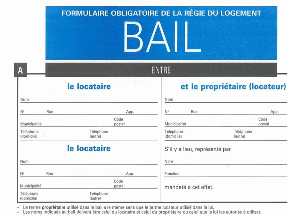 Bail appartement